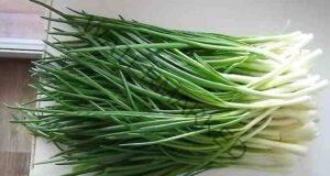 Как да отгледаме пресен лук у дома Бързо, лесно и без почва!