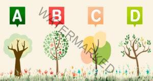 Изберете онова дърво, което ви харесва и разберете как ви характеризира то!