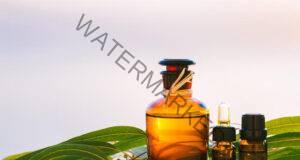 Евкалиптовото масло и неговите невероятни ползи!
