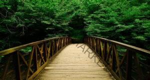 Изберете мост и разберете повече за личността си