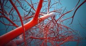 Проверете кръвоносните си съдове за 30 секунди! Ето как!