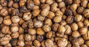 Стените от орехи лекуват много сериозни болести! Проверете!