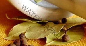 Дафинови листа - репелент за хлебарки! Домът ви ще е чист!