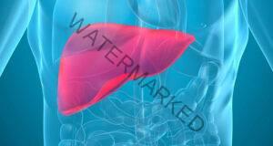 Увреждане на черния дроб: Ето как тялото ви предупреждава!