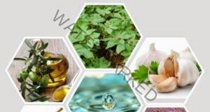 12 антибиотици, които природата ни е подарила!