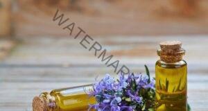 Маслото от розмарин помага при главоболие, умора, учене и още