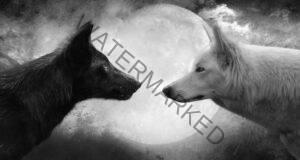 Притча за двата вълка. Ще я прочетете и ще я помните вечно!