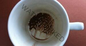 Гледане на кафе! Изберете чаша и узнайте своето предсказание!