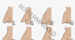 Носът и неговата форма говорят много за характера ви! Прочете тук!