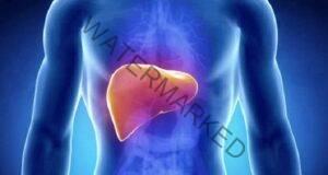 Шест храни, които ще подсилят и пречистят черният ви дроб