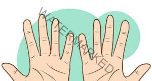Към какви заболявания сте предразположени? Погледнете ръцете си!