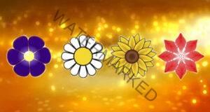 Изберете цвете и получете своето тайно послание!