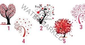 Изберете дърво и разберете повече за своята личност