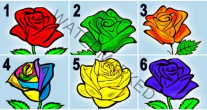 Розата може да ви открие тайни за вашия характер
