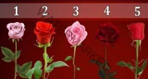 Изберете роза и вижте дали ще се сбъдне най-голямото ви желание!
