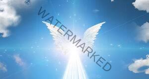 Познайте своя ангел – пазител според неговите крила