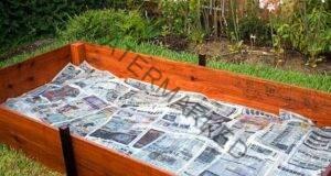 Ето защо аз събирам всички вестници и ги ползвам в градината!