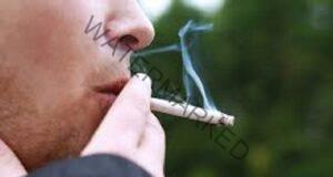 Защо едни пушачи се разболяват от рак, а други не?