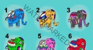 Изберете слон и разберете какъв съвет крие за вас!