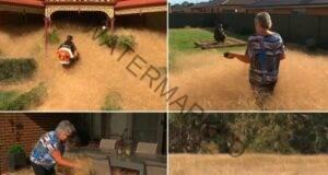 Трева създава проблем на цяло село: Не можем да се спасим!