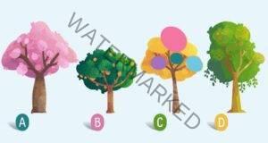 Какъв е вашият характер? Изберете дърво и открийте сами!