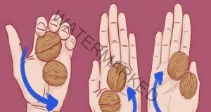 Вижте защо трябва да държите по 2 ореха в ръка!