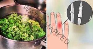 Магданозът ще ви помогне при тези 3 здравословни проблема