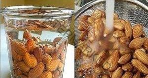 Накиснете 4 бадема за една нощ и ги изяжте на следващата сутрин!