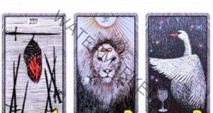 Вашият духовен наставник предоставя три карти! Коя избирате?