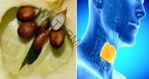 За правилното функциониране на щитовидната жлеза яжте това!