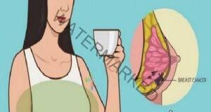Kитайска билка убива 90% от раковите клетки на гърдата за 16 часа