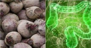 Цвеклото и неговите ползи за вашия организъм