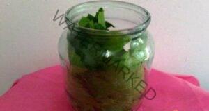 Излекувайте дисковата херния с помощта на листа от бреза