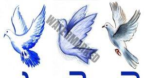 Вълшебните гълъби са подготвили своите предсказания