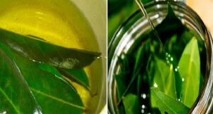 Пийте чай от дафинов лист при главоболие и стомашни проблеми!