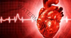 Предупредителни симптоми за сърдечен удар, които трябва да знаете