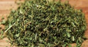 Чай от коприва помага при редица заболявания