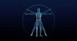 9 защитни механизма на тялото ви, за които дори не подозирате