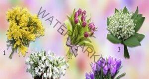 Разберете какви приятни събития ви очакват тази пролет!