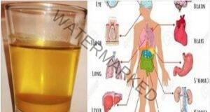 Възползвайте се от полезните свойства на напитката с куркума!