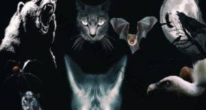 Изберете едно животно и узнайте коя е най-тъмната ви страна!