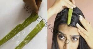 Косата ви ще започне да расте по-бързо, ако използвате гел от алое