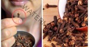 Ето какво ще се случи с тялото ви, ако дъвчете карамфил