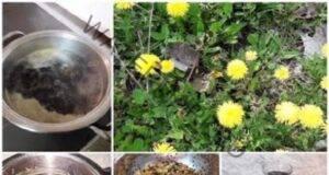 Лековит мед от глухарчета: Пролетният е най-полезен