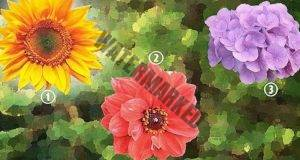 Цветята ще разкрият какви сте! Точен психологически тест.