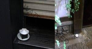Ето защо японците поръсват сол в ъглите на домовете си