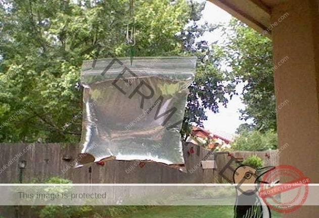 Това е най-евтиният начин да се отървете от досадните насекоми