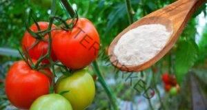 10 невероятни приложения на содата за хляб в градината