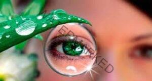 Върнете зрението си само за 4 дни с помощта на алое вера