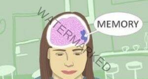 Подобрете паметта си с 80%, функциите на мозъка и зрението!